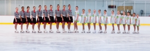 synchro teams
